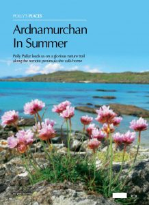 Ardnamurchan Summer cover