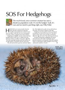 HEDGEHOG SOS cover